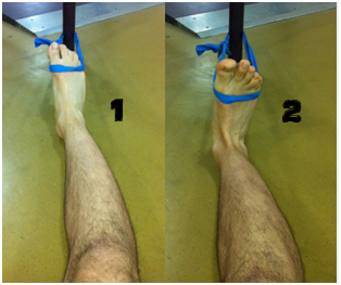 ANKLE DORSIFLEXION &PLANTARFLEXION WITH RESISTANCE BAND