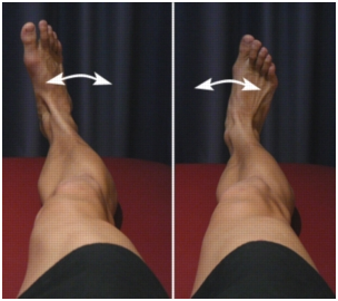 FOOT AND ANKLE IN AND OUT