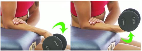 Flexor Exercise