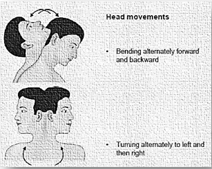 Head Movements